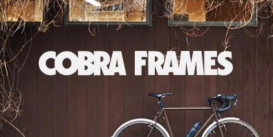 Cobra Frames Site